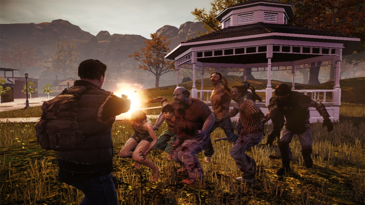 About State of Decay