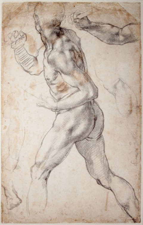 """Study of a Striding Male Nude"" - Michelangelo (Not the ninja turtle. I'm sorry. He's my favorite too.)"